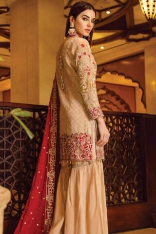 Serene Premium Embroidered Chiffon Festive Collection 2019 01 Chryseis Ruby