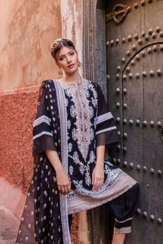 Sobia Nazir Embroidered Lawn Unstitched 3 Piece Suit SBNL20 10 A - Lawn Collection