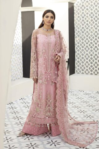 Gulaal Embroidered Net Unstitched 3 Piece Suit 2021 D 05 – Luxury Collection